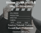 Image of the bespoke advert for BluZinc Executive Recruitment internal hiring campaign for consultants
