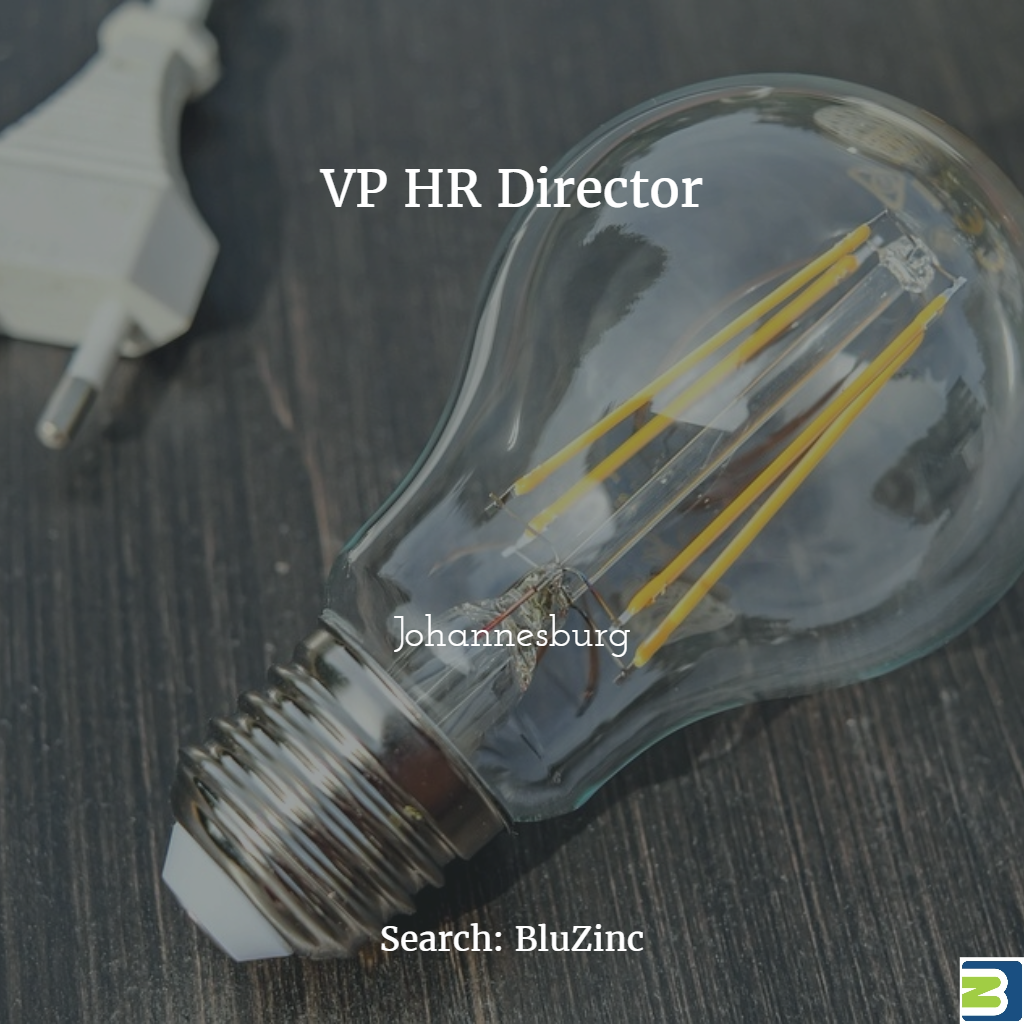 VP HR Director in Johannesburg for Expanding EnergyTech Start-Up
