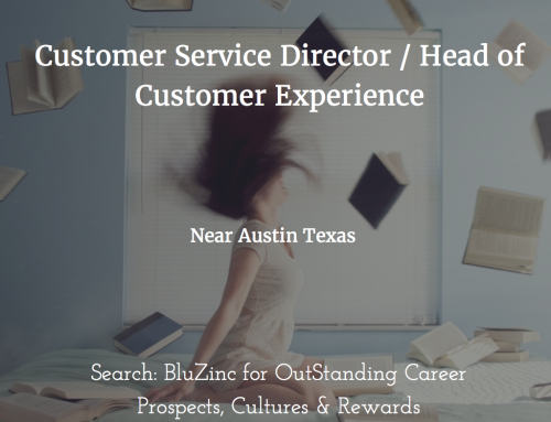 Customer Experience, Service & Support Director – Digital Marketing & SaaS Technology SME, nr Austin, Texas