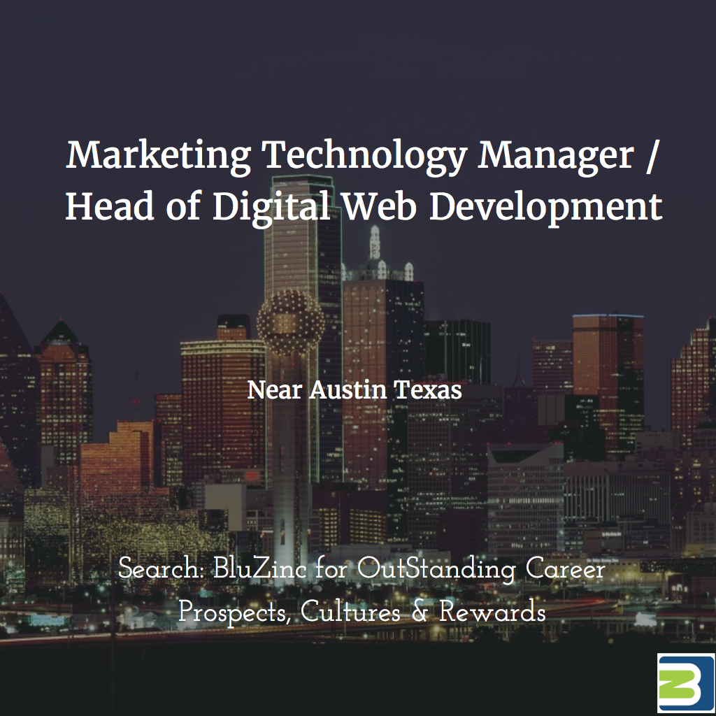 technology manager marketing austin bluzinc