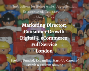 marketing-director-education-toys-games-digital-bluzinc-london