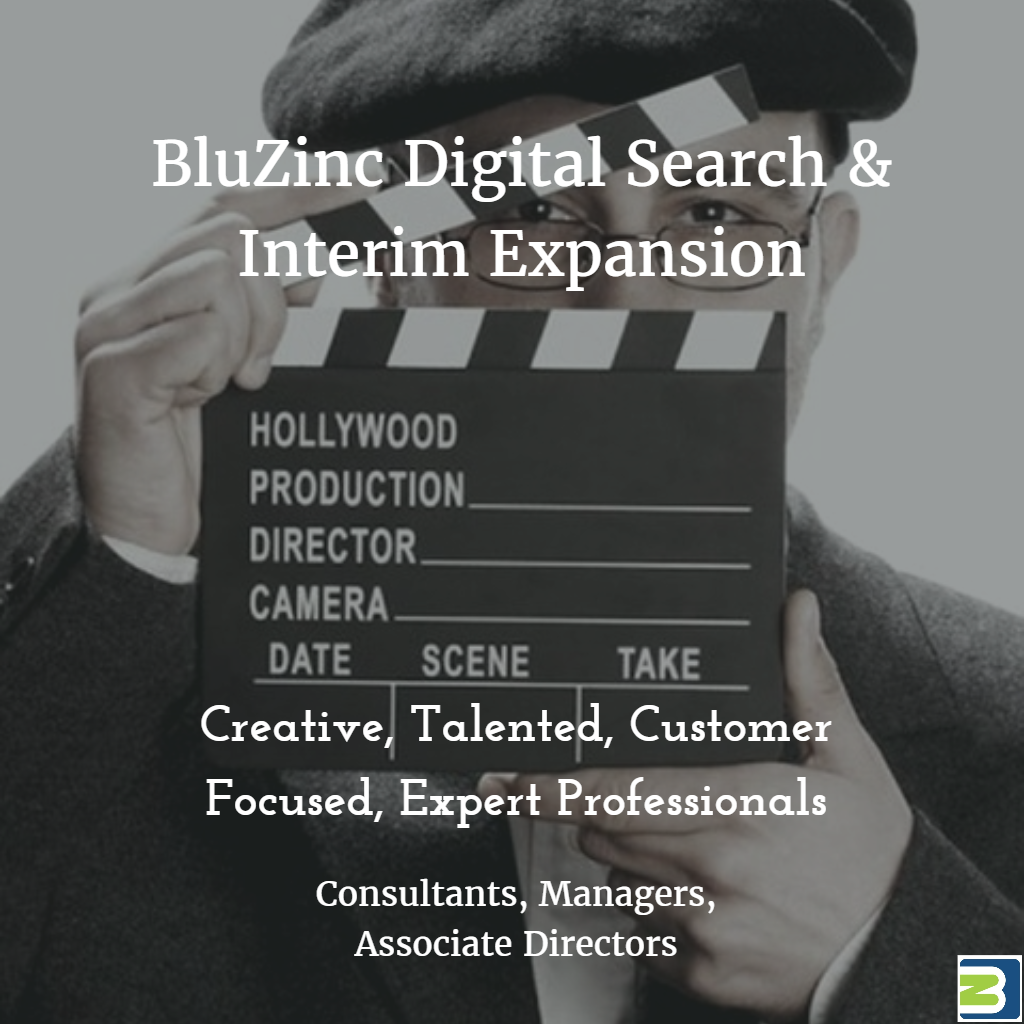 Do You Want To Be More Successful With Executive Digital Recruitment?  BluZinc Consultants Are Expanding….