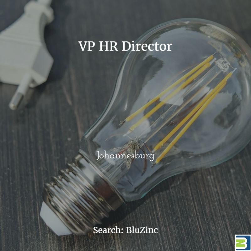 VP HR Director BluZinc