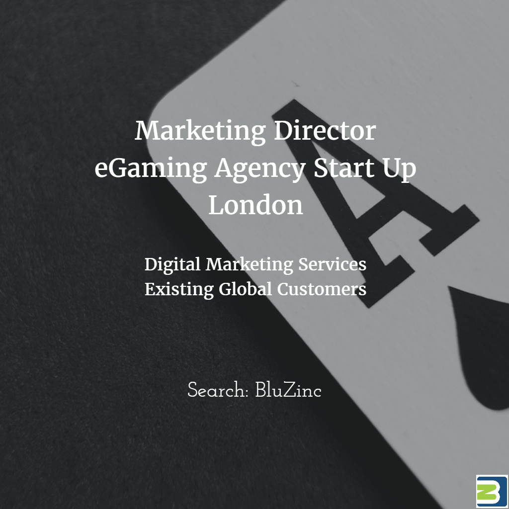 marketing-director-digital-agency-bluzinc-london