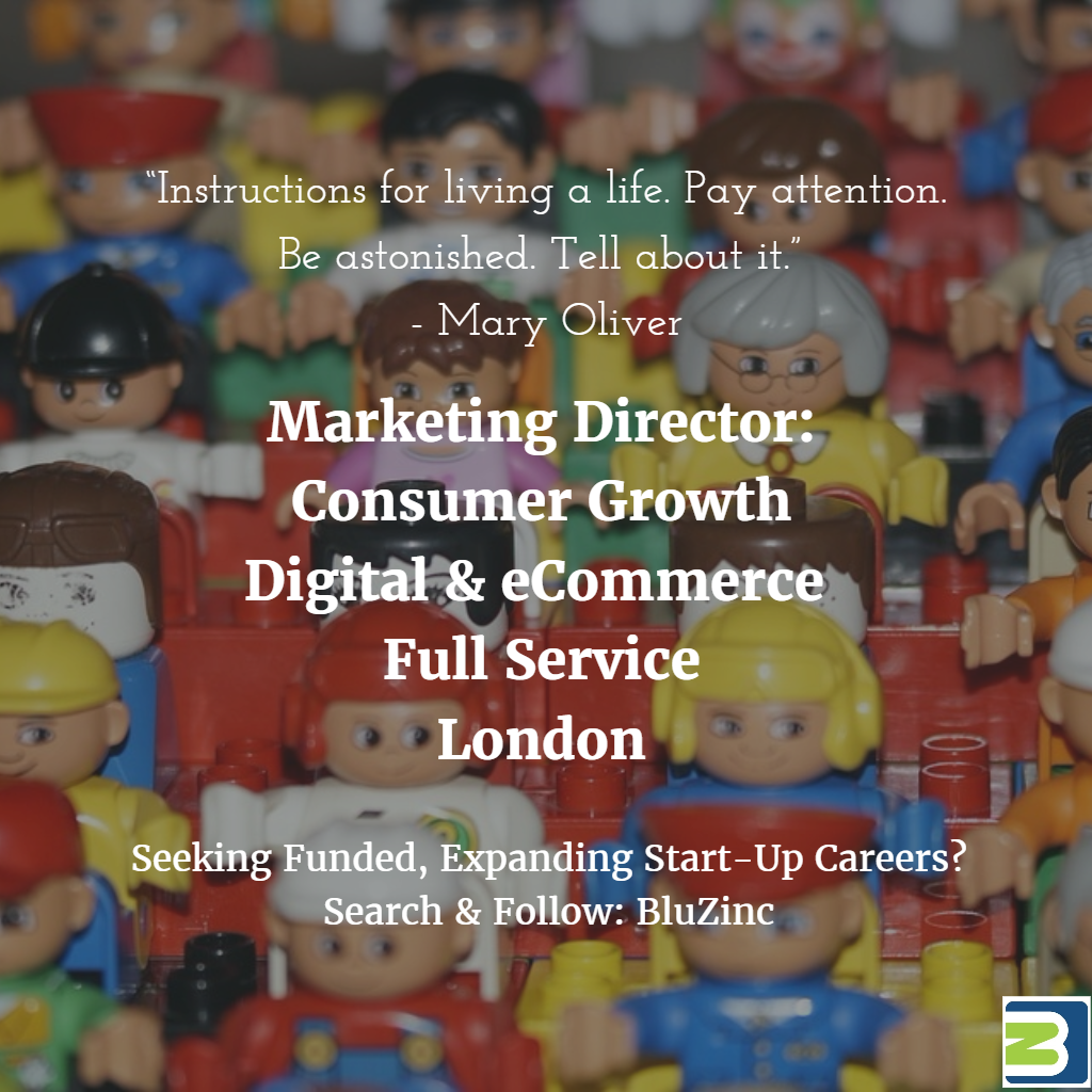 Marketing Director – UK / USA Consumer Growth Digital & eCommerce Performance – London