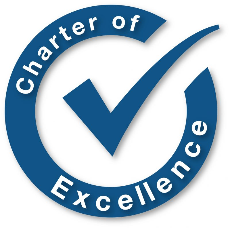 Image of the BluZinc TEAM Charter of Excellence and Code of Professional Conduct Logo